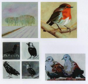 website-card-pack-seasonal-001